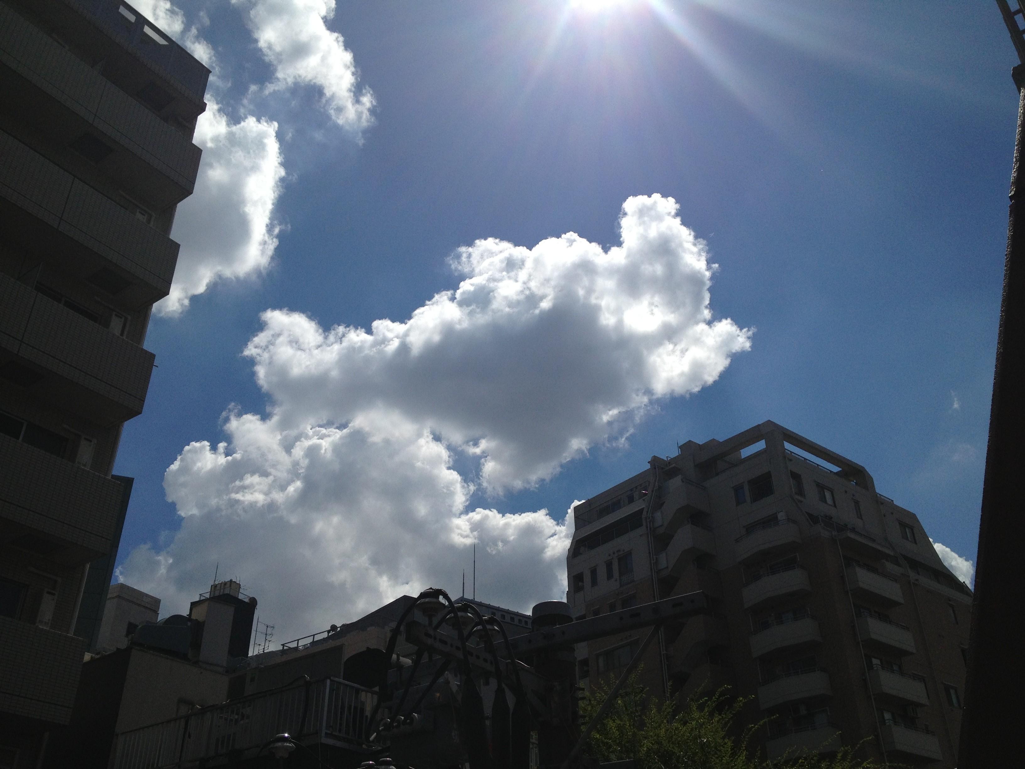 くっきり綺麗な雲
