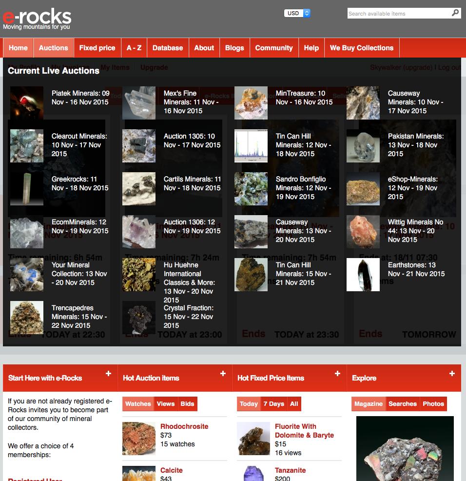 e-rocksオークションメニュー