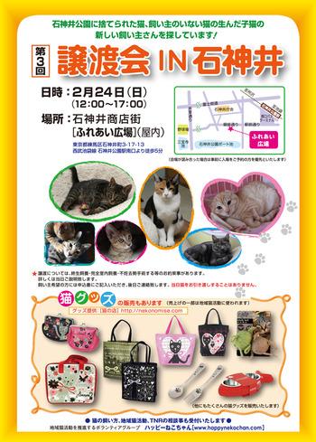 捨て猫に愛を…猫譲渡会レポート(東京都練馬区)