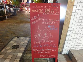 【猫カフェ】ニャフェメランジェ(恵比寿)に行ってきた