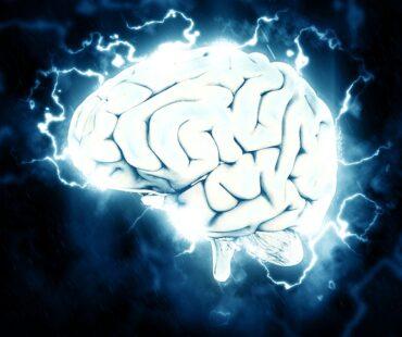 人工的に増殖させた大脳は、意識を持ちえるか?