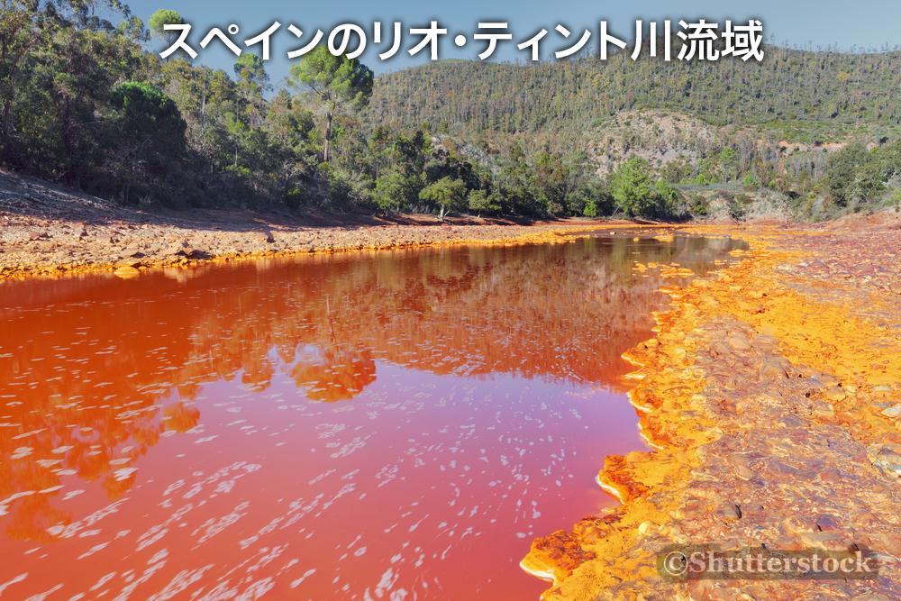 火星に似た環境で生きる微生物