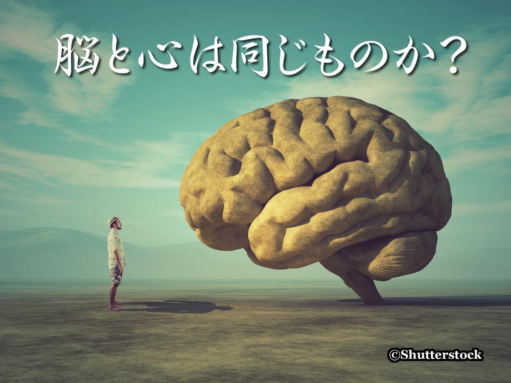 脳と心は同じものか?